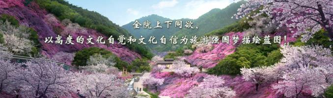 青海省大柴旦行政区伟德国际娱乐平台发展总体规划